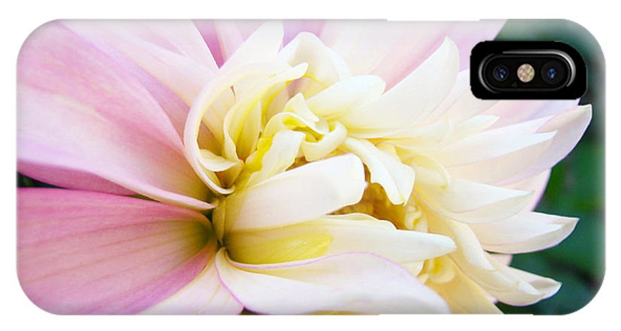 Dahlia IPhone X Case featuring the photograph Pink White Dahlia Flower Soft Pastels Art Print Canvas Baslee Troutman by Baslee Troutman