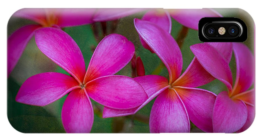 Pink IPhone X Case featuring the photograph Pinkalicious by Jade Moon
