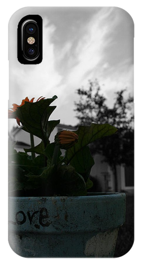 Plant Love IPhone X Case featuring the photograph Plant Love by Dylan Punke