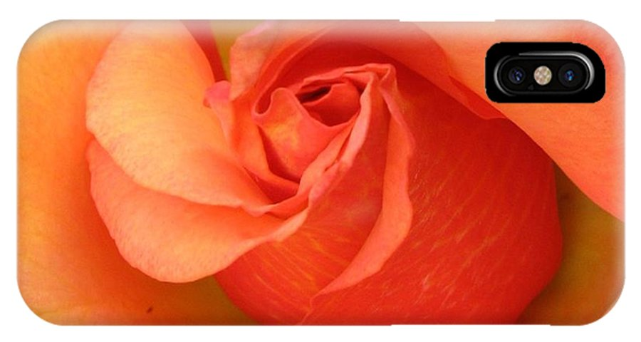 Orange IPhone X Case featuring the photograph Playful by Carol Sweetwood