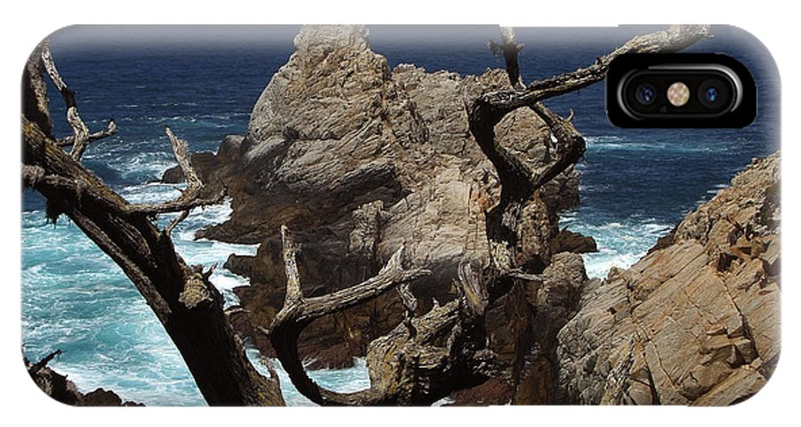 Carmel IPhone X Case featuring the photograph Point Lobos Rocks And Branches by Charlene Mitchell