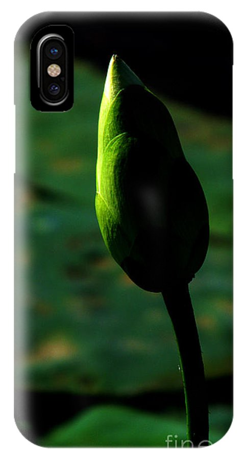 Lotus IPhone X Case featuring the photograph Poised For Greatness by Amanda Barcon