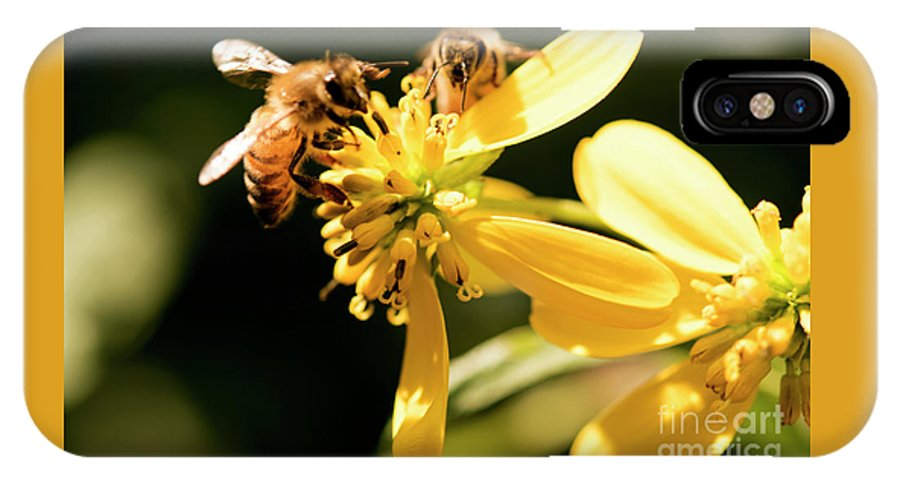 Yellow Flower IPhone X Case featuring the photograph Pollinating Bees by Michelle Himes