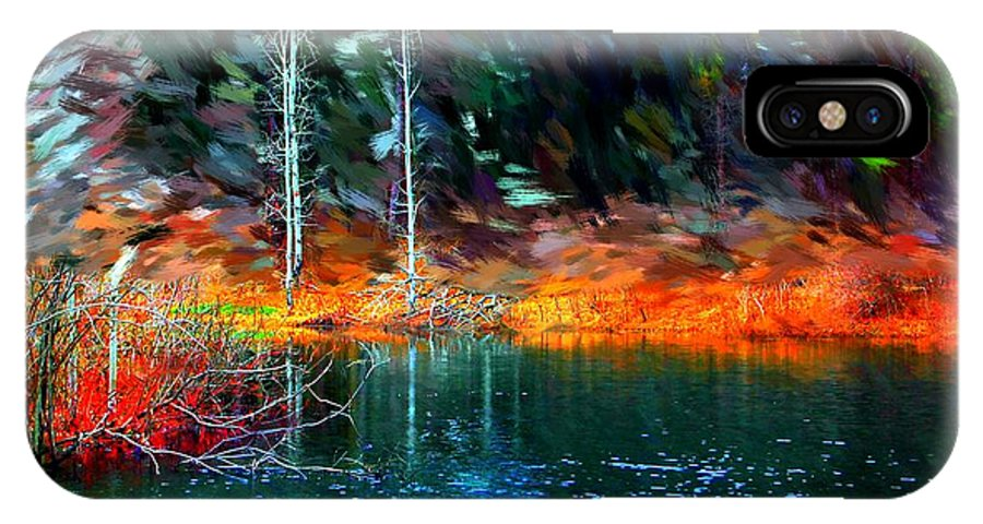 Digital Photograph IPhone X Case featuring the photograph Pond In The Woods by David Lane