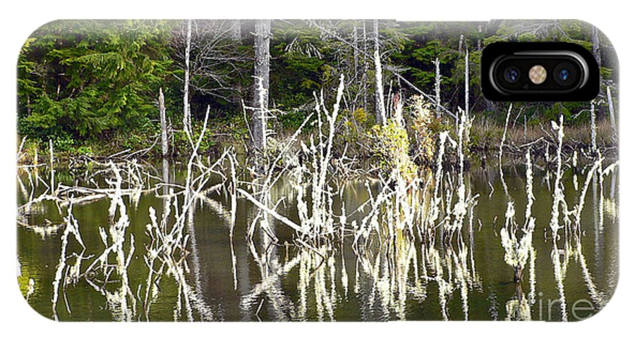 Water IPhone Case featuring the photograph Pond Sticks by Larry Keahey