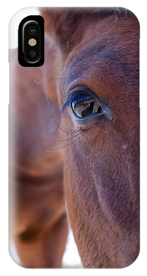 Horse IPhone X Case featuring the photograph Pony by Dustin K Ryan