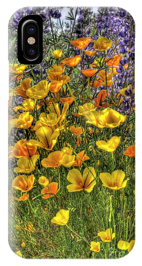 Poppy IPhone X Case featuring the photograph Poppies And Lupines by Jim And Emily Bush
