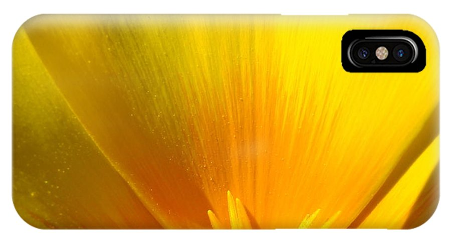 �poppies Artwork� IPhone X Case featuring the photograph Poppies Orange Poppy Flower Close Up 2 Sunlit Poppy Baslee Troutman by Baslee Troutman