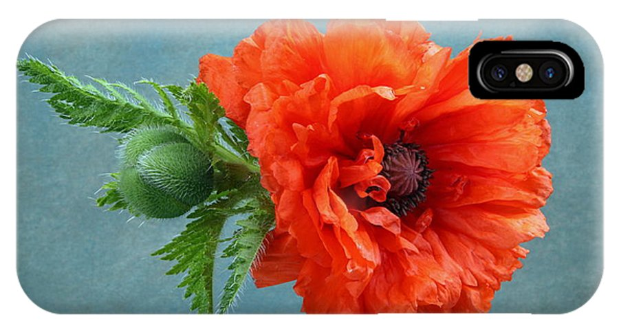 Poppy IPhone X / XS Case featuring the photograph Poppy Flower by Manfred Lutzius