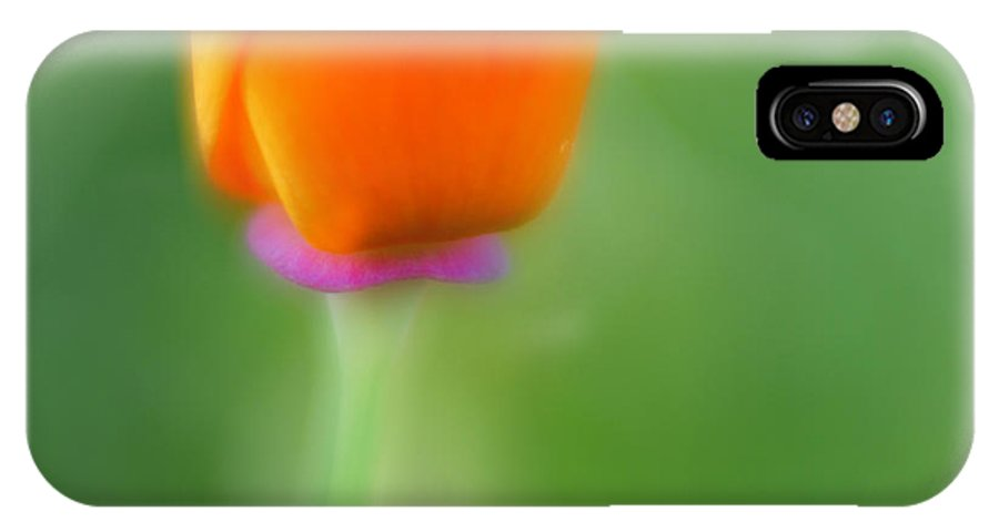 Flower IPhone X Case featuring the photograph Poppy Flower by Silke Magino