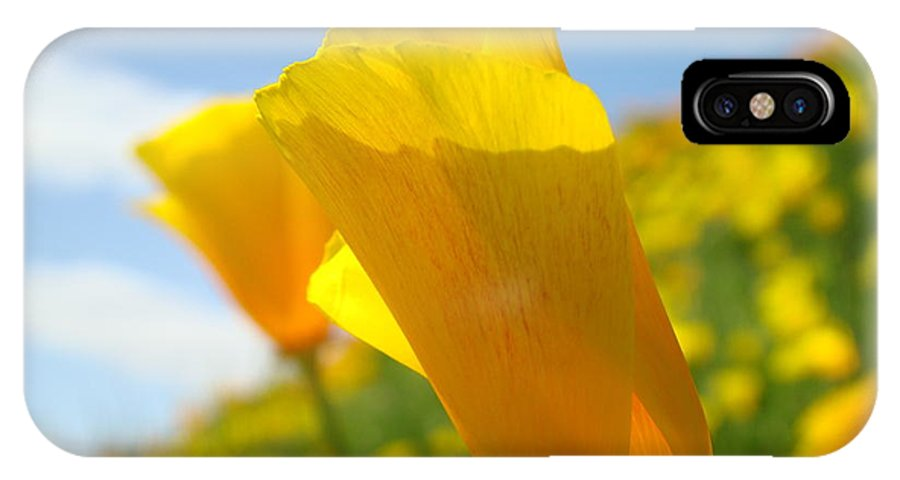 �poppies Artwork� IPhone X Case featuring the photograph Poppy Flowers Meadow 3 Sunny Day Art Blue Sky Landscape by Baslee Troutman