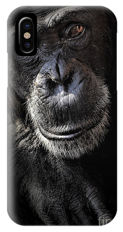 Chimp IPhone X / XS Case featuring the photograph Portrait Of A Chimpanzee by Sheila Smart Fine Art Photography