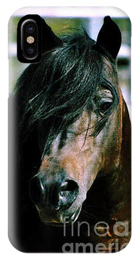 Horse IPhone X Case featuring the photograph Portrait Of His Majesty - The King by Kathy McClure