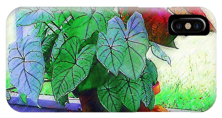 Garden IPhone X Case featuring the photograph Potted Plant by Donna Bentley