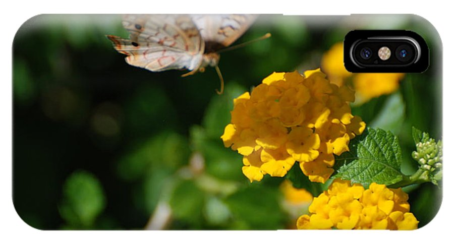 Butterfly IPhone X Case featuring the photograph Pre Landing by Rob Hans