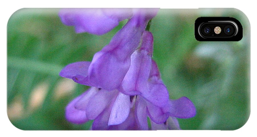 Flower IPhone Case featuring the photograph Pretty Purple by Melissa Parks