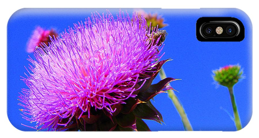 Thistle Bloom IPhone X Case featuring the photograph Pretty Weed by J R  Seymour