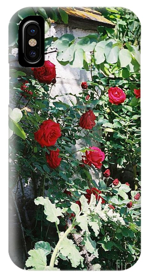 Floral IPhone X Case featuring the photograph Provence Red Roses by Nadine Rippelmeyer