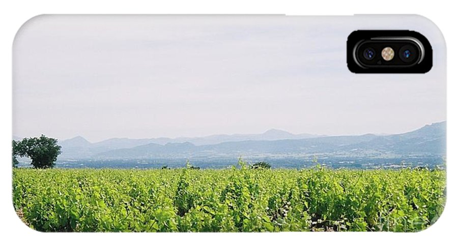 France IPhone X Case featuring the photograph Provence Spring Vineyard by Nadine Rippelmeyer