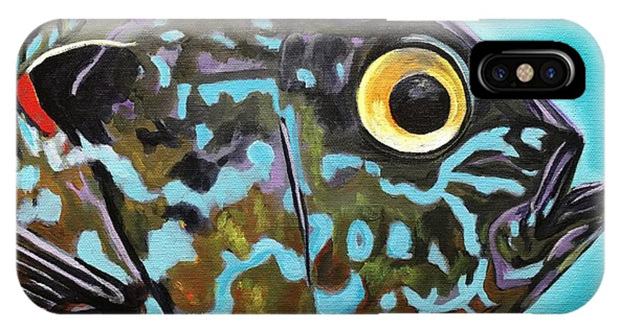 Fish Art IPhone X Case featuring the painting Pumpkinseed by Phil Watford