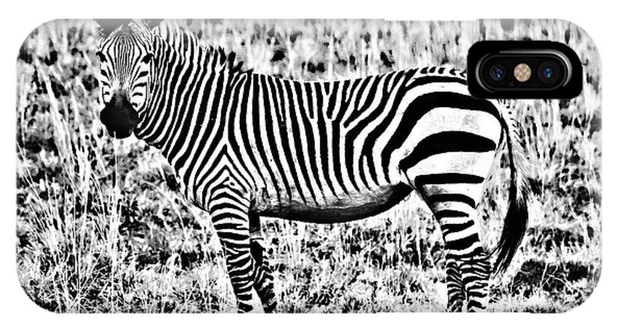 Africa IPhone X Case featuring the photograph Punda Milia 2 by Douglas Barnard