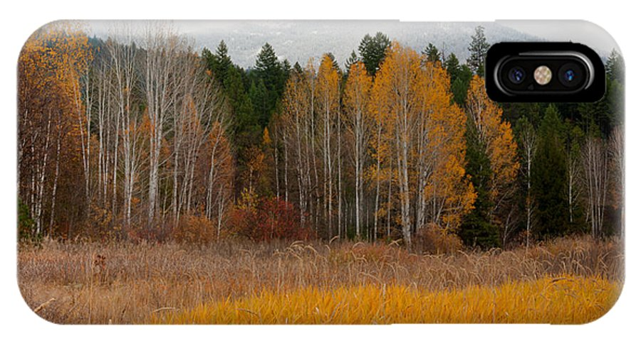Kaniksu National Forest IPhone X Case featuring the photograph Purcell Gold by Idaho Scenic Images Linda Lantzy