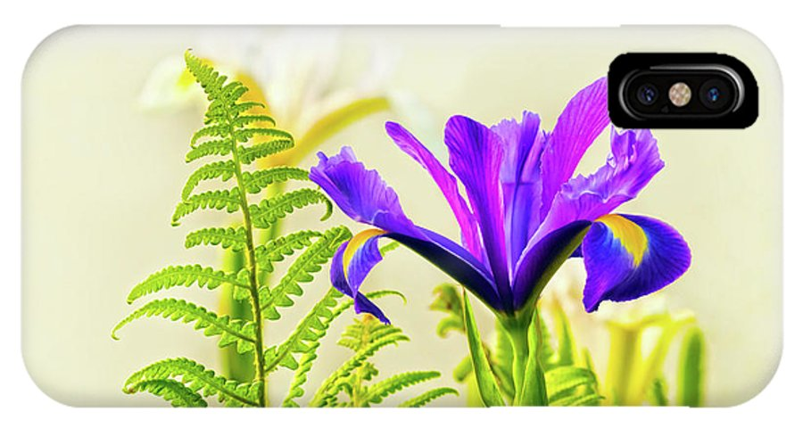 Flower IPhone X Case featuring the photograph Purple And Blue Iris by Terri Waters