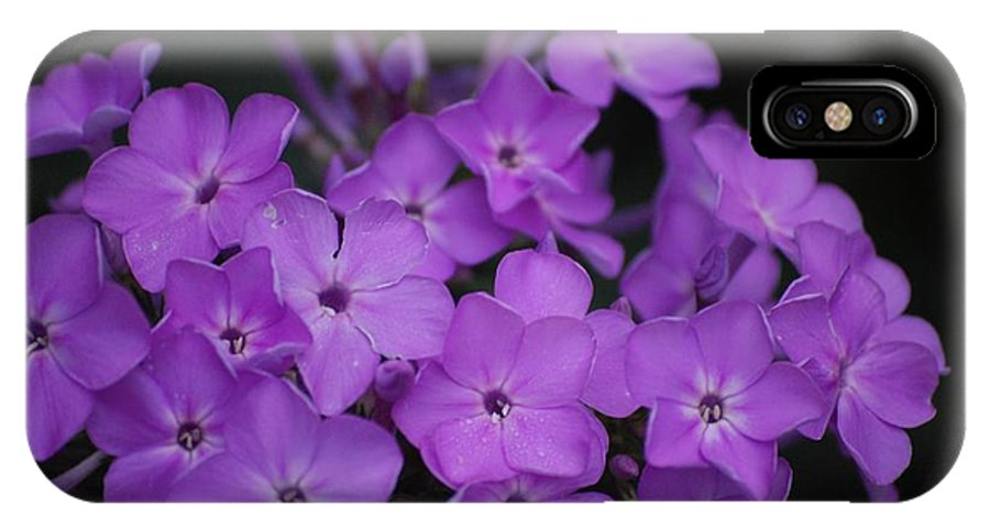 Digital Photo IPhone Case featuring the photograph Purple Blossoms by David Lane