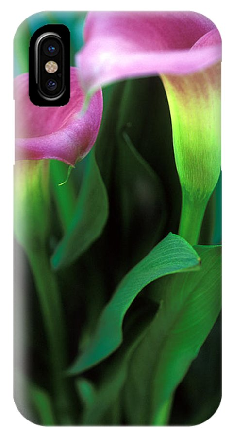 Florals IPhone X Case featuring the photograph Purple Calla Duet by Kathy Yates