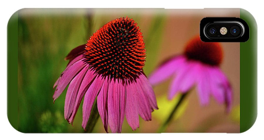 Background IPhone X Case featuring the photograph Purple Coneflower by Krista Russell