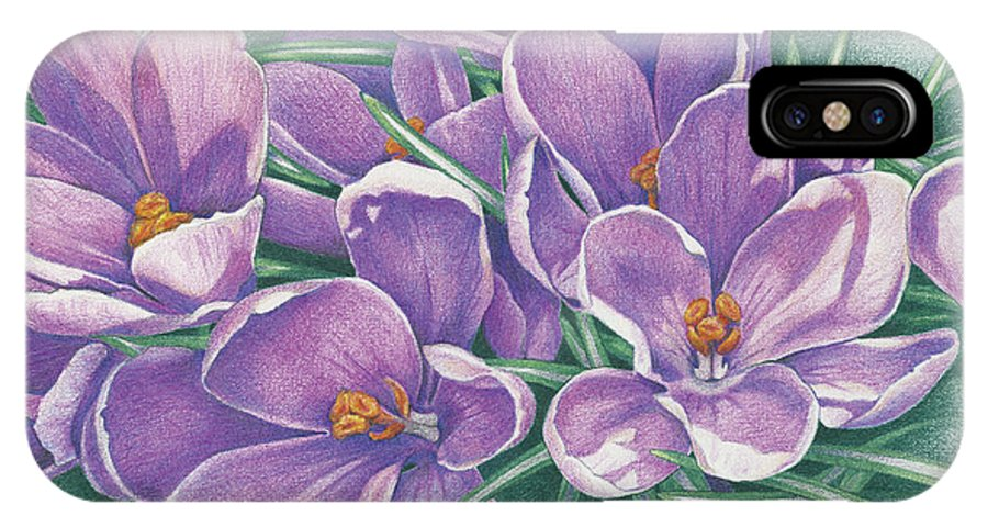Crocus IPhone X Case featuring the drawing Purple Crocus by Amy S Turner