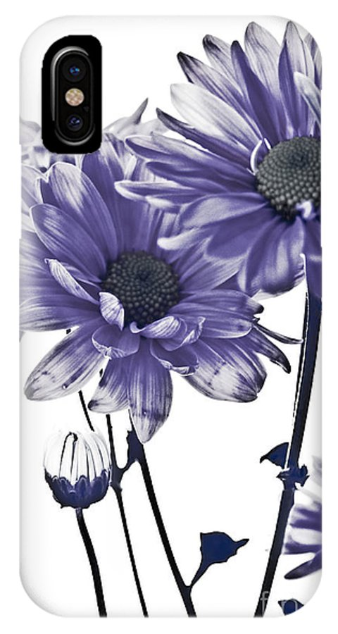Flowers IPhone X Case featuring the photograph Purple Daisies by Robin Lynne Schwind