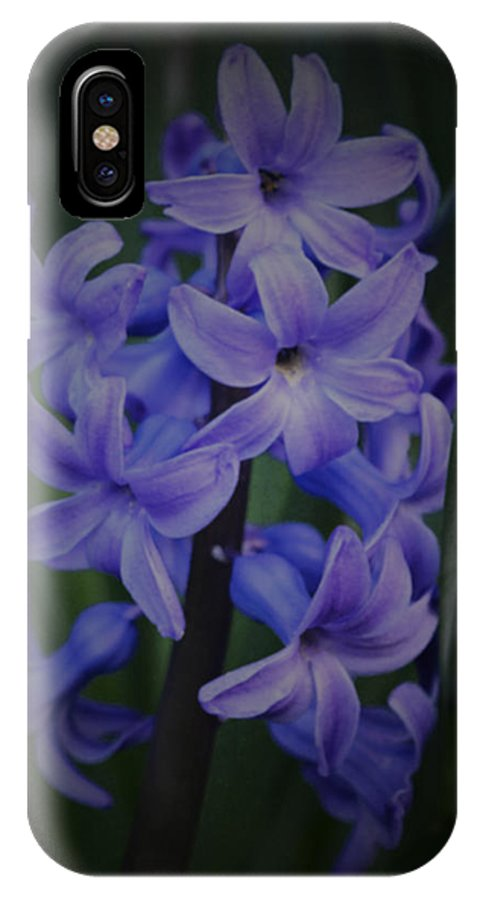 Hyacinth IPhone X Case featuring the photograph Purple Hyacinths - 2015 D by Richard Andrews