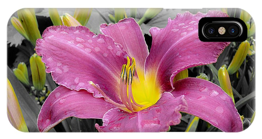 Washington IPhone X Case featuring the photograph Purple Lily by Larry Keahey