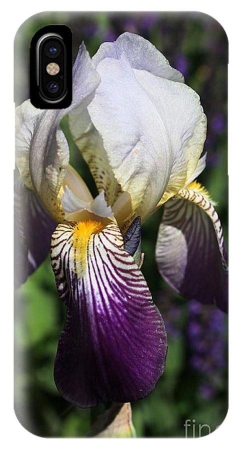 Iris IPhone X Case featuring the photograph Purple On Purple Iris by Marjorie Imbeau