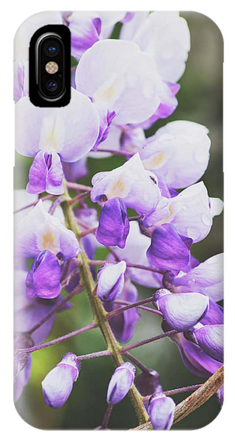 Flowers IPhone X Case featuring the photograph Purple Petals by H Roberts Photography