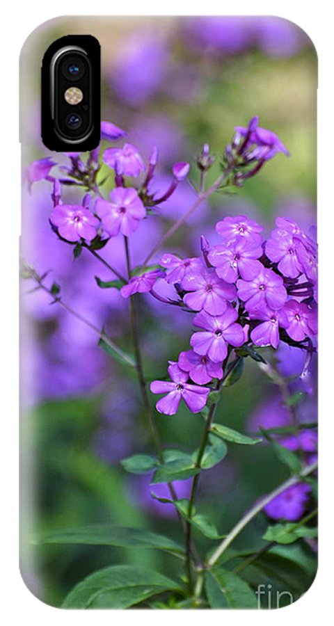 Purple Phlox IPhone X Case featuring the photograph Purple Phlox by Penny Neimiller