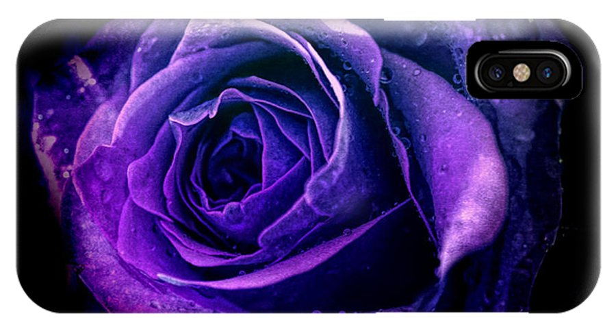Rose IPhone X Case featuring the photograph Purple Role by Lilia D