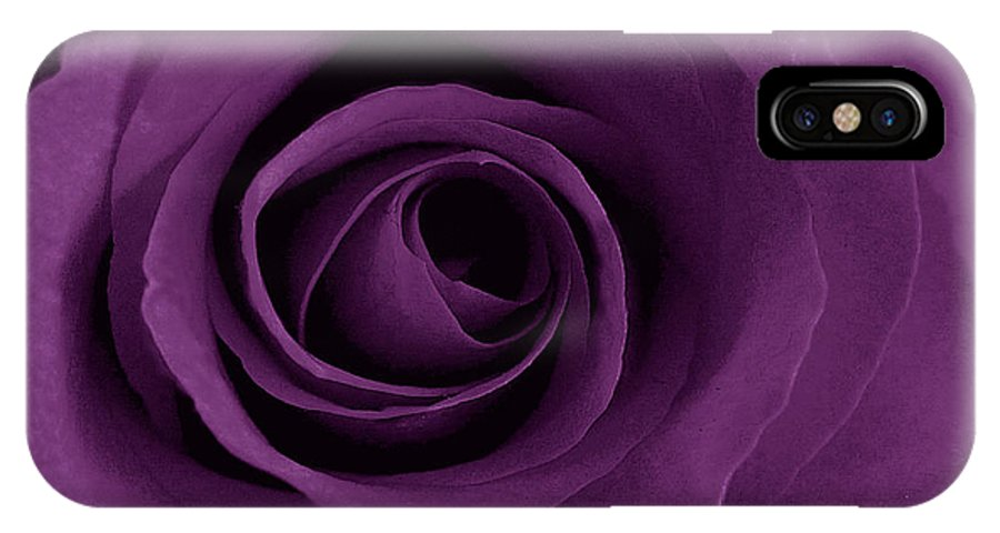Rose IPhone Case featuring the photograph Purple Rose Of Artsy by Leonard Rosenfield
