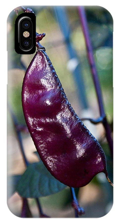 Sweet IPhone X Case featuring the photograph Purple Sweet Pea Pod by Douglas Barnett