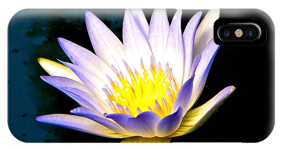 Water Lily IPhone X Case featuring the photograph Purple Tipped Water Lily by Tisha Clinkenbeard