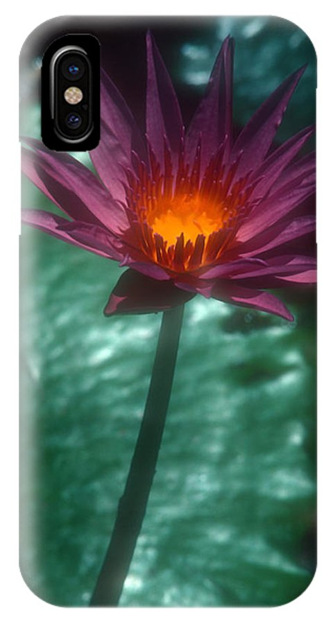 Flower IPhone X Case featuring the photograph Purple Water Lily by Stephen Anderson
