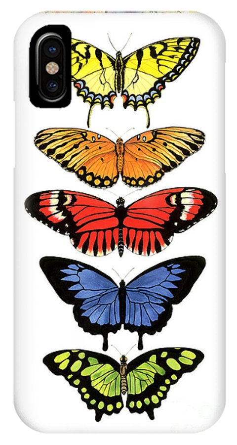 Butterflies IPhone X Case featuring the painting Rainbow Butterflies by Lucy Arnold