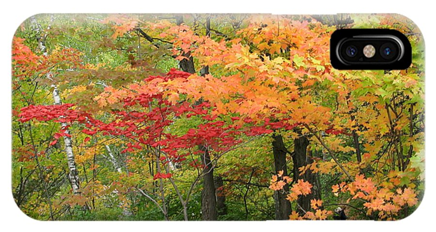 Fall IPhone Case featuring the photograph Rainbow by Kelly Mezzapelle