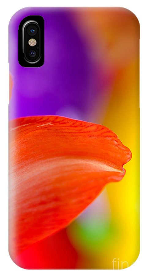 Amaryllis IPhone X Case featuring the photograph Rainbow Tip Red Amaryllis Petal Tip On A Rainbow Background by Andy Smy