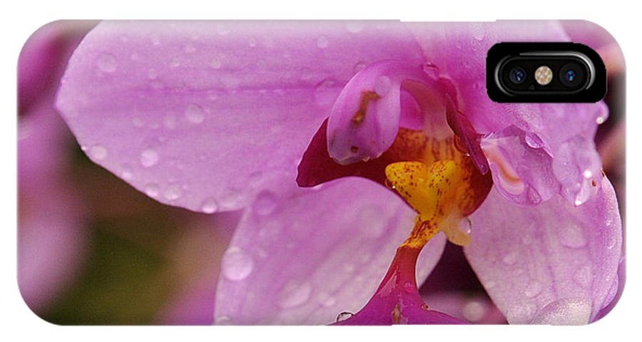 Raindrop IPhone X Case featuring the photograph Raindrop Reflections by Jody Lovejoy