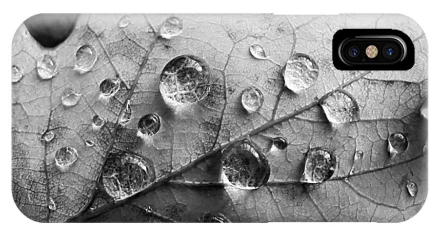 Drops IPhone X Case featuring the photograph Raindrops by Daniel Csoka