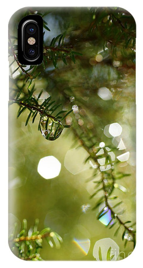 Dew IPhone X Case featuring the photograph Raindrops by Gaspar Avila