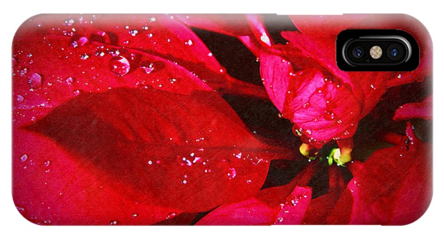 Raindrops On Red Poinsettia IPhone X Case featuring the photograph Raindrops On Red Poinsettia by Mariola Bitner