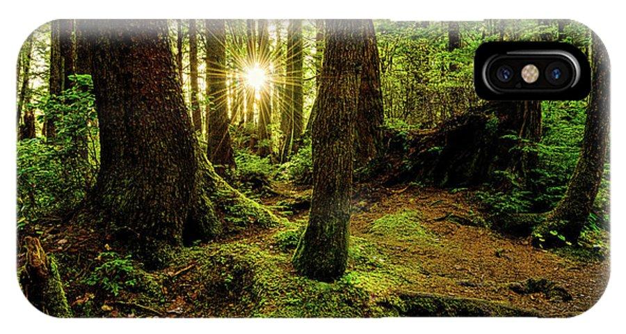 Rainforest IPhone X Case featuring the photograph Rainforest Path by Chad Dutson
